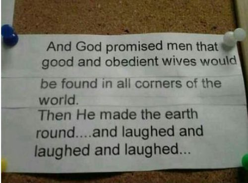 : Laughing, Obedience Wives, Funny Things, Quotes, God Sen, Funny Stuff, Humor, Funnystuff, God Promi