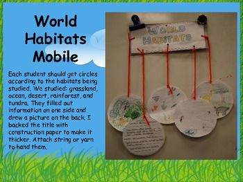 I created and used this project with my second and third grade students while studying animals  plants  and habitats  We completed this following t