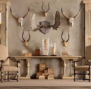 Antlers Can Be Spotted From A Rustic Home To A Modern Colorful Room You Can Hang Mounted Antlers Or Ones With Attached Skulls Singularly O