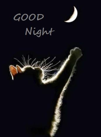 Good Night Pictures, Photos, and Images for Facebook, Tumblr, Pinterest, and Twitter                                                                                                                                                     More