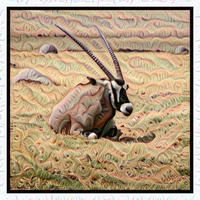 Deep Dream image filters by Dreamscope