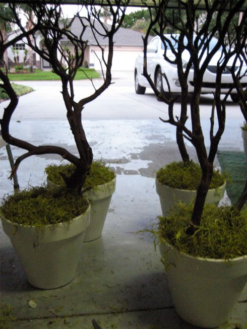 DIY- setting branches in pots using spray foam: Add some moss to the top of the foam add lights and there you have it...Cheap wedding decor! Add some white fairy lights and it's also a light fixture