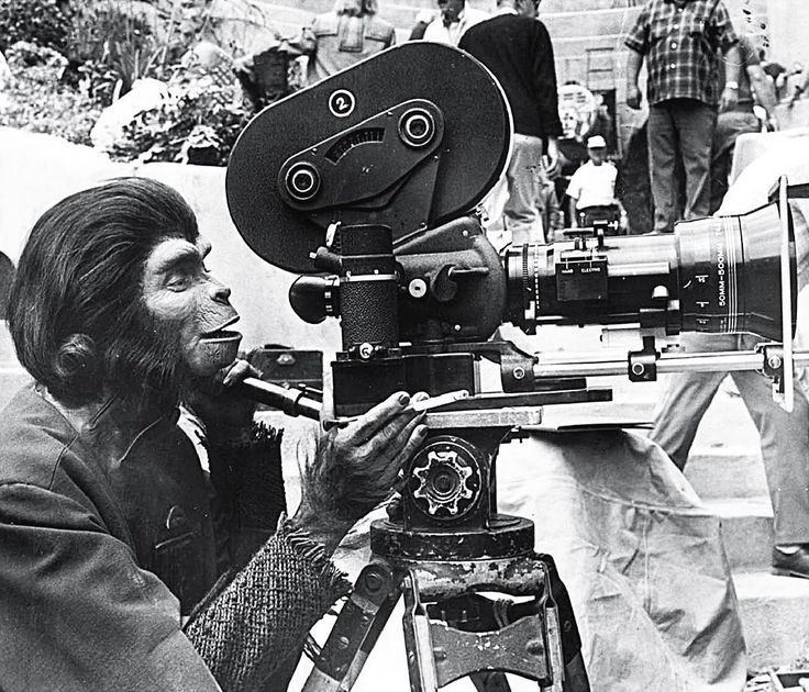 oneliners Making Of // Beneath the Planet of the Apes with an Arriflex IIC - 1970 | #makingof #films #movies #oldcamera #vintagecamera #vintage #vintagestyle #retro #oldie #oldschool #behindthescenes #director #cinema #classicmovie #filmmaker #moviestar #moviecamera #planetoftheapes #panavision #arriflex #cameraman #apes #tedpost #pierreboulle