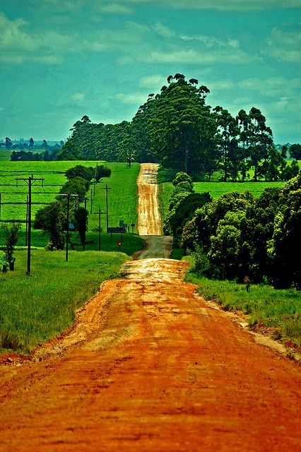 Road from Magwa in Transkei, South Africa    Photo by Stewart White    Via Flickr / stewartwhite