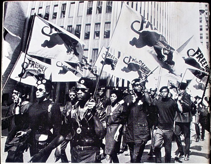 the role of the black panthers in the black rights struggles in america Formed in 1966, the black panther party for self defense was the largest black revolutionary organization that has ever existed famous for taking up guns in defense against police brutality, the panthers had many other little-known sides to their work.