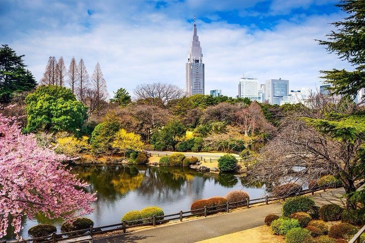 8 wonderful things you should know about Shinjuku Gyoen National Garden in Tokyo
