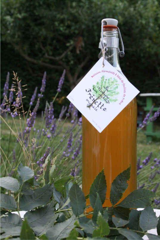 Чай и разговоры - Ликёры, вина и прочие алкогольные напитки Нормандии (рецепты французских бабушек)