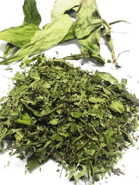 Daun stevia pemanis alami non kalori dan organik. Pemanis untuk penderita diabetes mellitus dan untuk diet.
