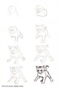 Como dibujar gatos (6)