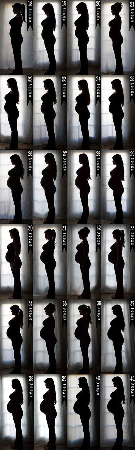 Silhouette... What A Great Way To Show The Progression Of Your Baby Bump...