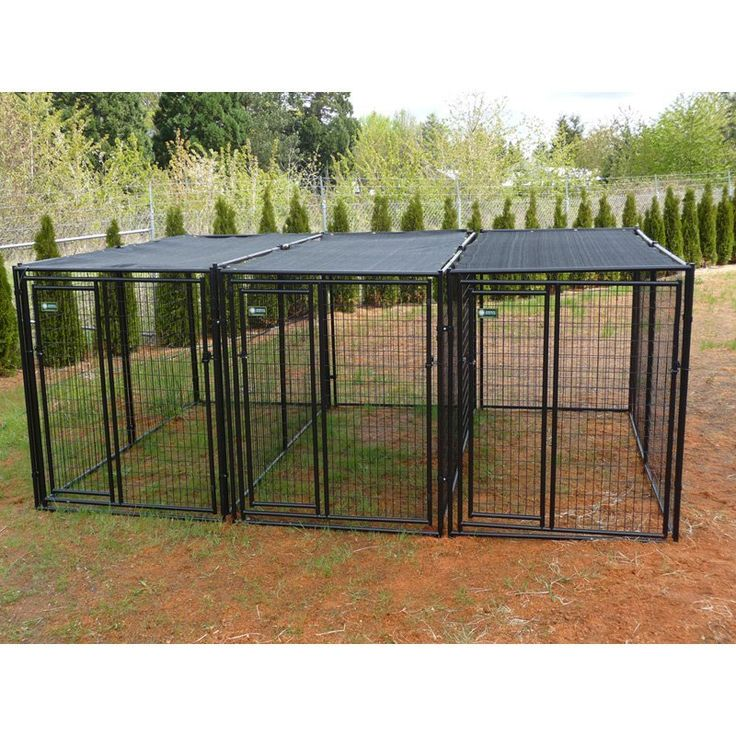 AKC 5 x 10 x 6 ft. Premium Heavy Duty Dog Kennel - 3 Run with Common Walls | from hayneedle.com