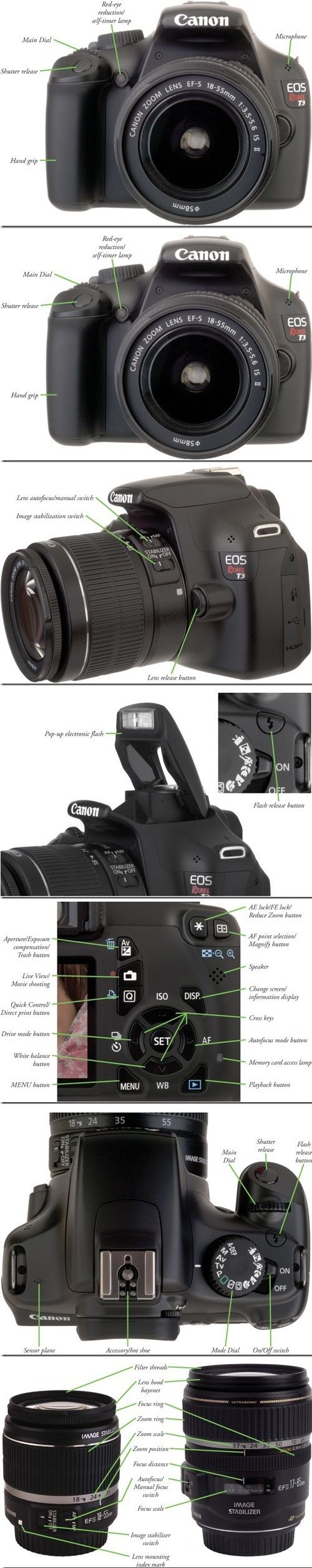 how to use canon rebel