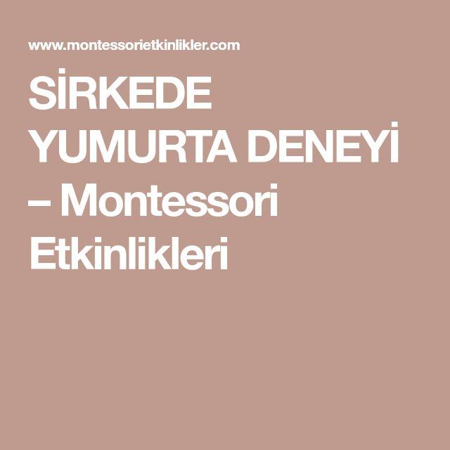 SİRKEDE YUMURTA DENEYİ – Montessori Etkinlikleri