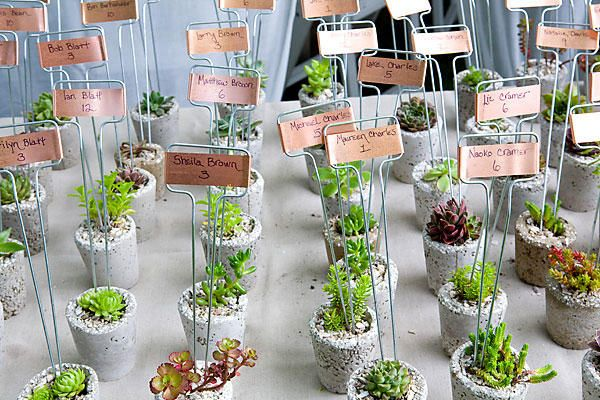 love the favor w/ table placement idea...andd that they're plants
