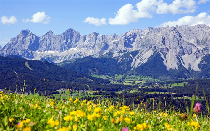 Download wallpapers Austria, 4k, alpine meadows, mountains, Austrian Alps, summer, Europe, Alps