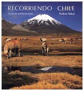 Die Sonne genießen auch die Alpacas im chilenischen Hochland!  Hier das Titelbild eines der Bücher von Norberto Seebach, Kalender erhältlich bei Chile Wein Contor.