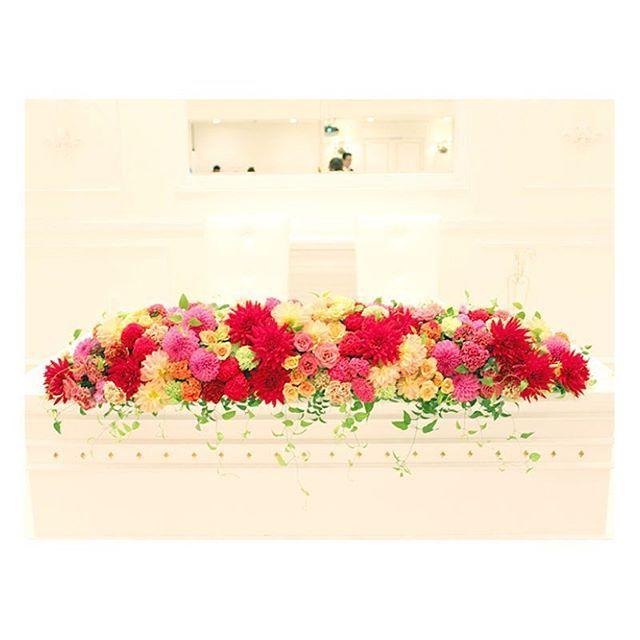 . . 真っ白な空間に色鮮やかな ダリアを使った秋色ウェディング♡ . 「華麗」「優雅」「気品」と言う 花言葉を持つダリアの花 装花のポイントにとり入れてみては? . #flowerwalkpopo #富山県 #花嫁準備 #プレ花嫁 #結婚式準備 #結婚式 #ウェディング #テーマウェディング #オリジナルウェディング #キャナルサイドララシャンス #ララシャンス#花屋 #花 #メインテーブル #メイン装花 #秋 #ダリア #大人 #おしゃれ #素敵 #ブライダル #wedding #weddingflowers #bride #bridal #bridalflowers #instflower #flowerstagram #flowerpic#autumn