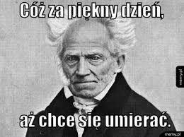 Znalezione obrazy dla zapytania arthur schopenhauer memy