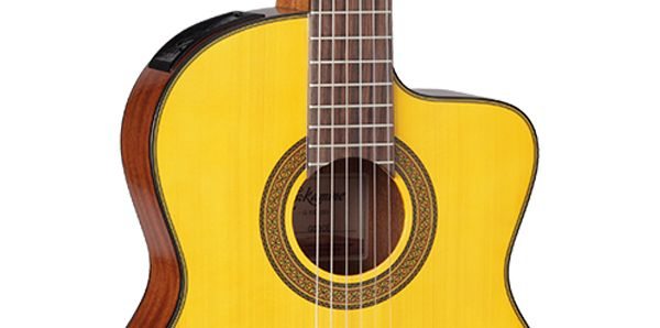 Takamine Guitars :: product-details