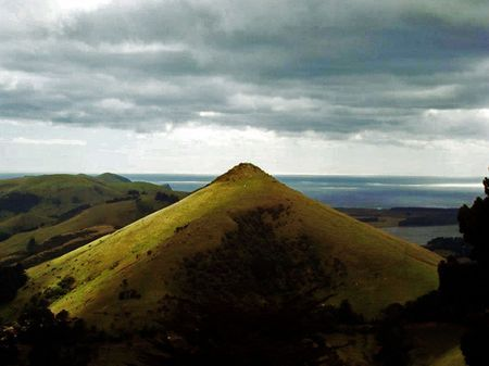 Hereweka/Harbour Cone, Otago Photo by Lisa O'Sullivan -- National Geographic Your Shot