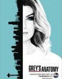 Grey's Anatomy Saison 13 | SERIE STREAMING En Français