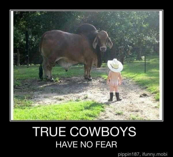 round em up cowboy! tlhyoung: Real Cowboys, The Real, Cowboys Baby, Be- Cowboys, Cowboys Up, Funny Stuff, Little Boys, Cows Boys, Kid