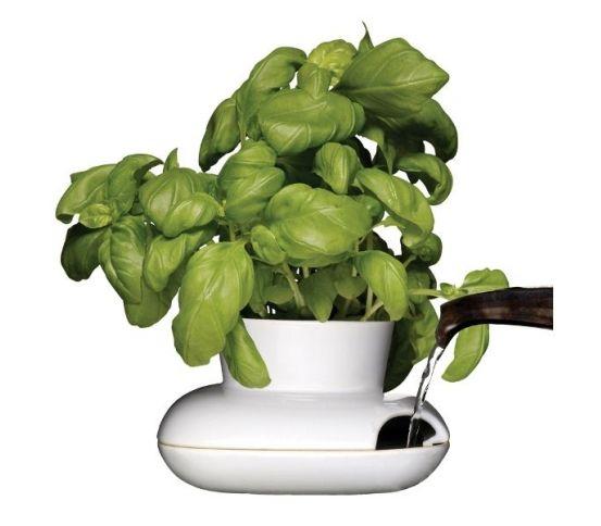 Sagaform - Wazon na zioła Herbs&Spices mały 13 cm