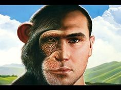 Human Evolution • History of Humanity ◘ Documentary▶ http://YouTube.com/watch?v=y9Ski3H8dXk