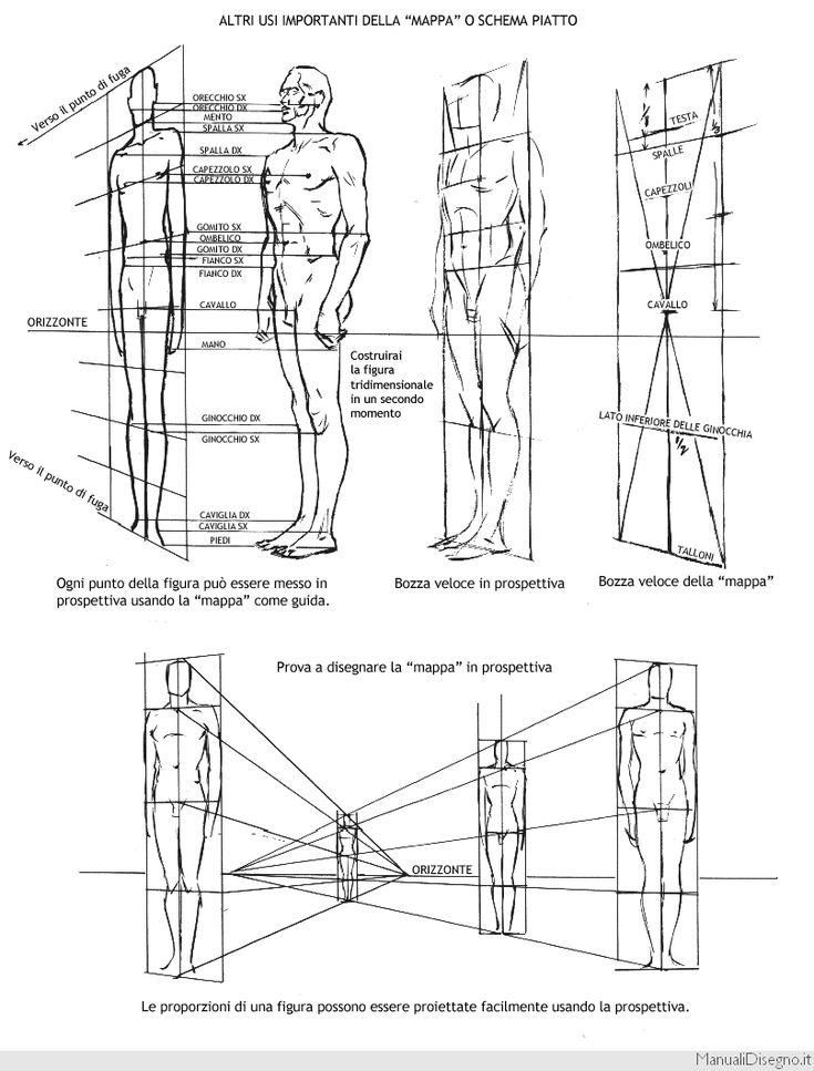 """Se il capitolo precedente, con le proporzioni standard dei corpi maschile e femminile era utile, quello che stai per leggere è imperdibile!!! Non solo avrai un pratico schema che riproduce i diversi standard di proporzione del corpo umano, a partire da quello più realistico per arrivare a un modello stile """"Hercules"""" ma troverai uno schema …"""