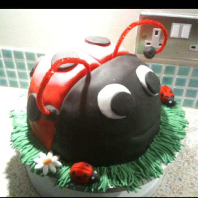 Ladybird birthday cake for my nephews 1st birthday