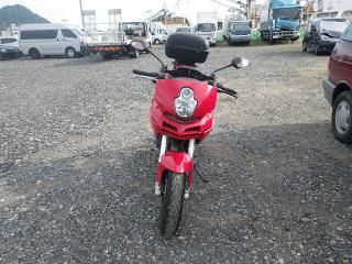 Used Ducati ZDMA109 for sale From Japan!! More Info: http://www.japanesecartrade.com/stock/japan-used-ducati-ducati-bikes-bikes-2194224.html #Ducati #ZDMA109 #JapanUsedBike