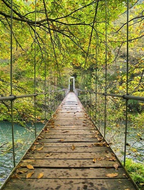 Fraga do Eume (Coruña) El Blog de La Tabla: De bosques en otoño por España
