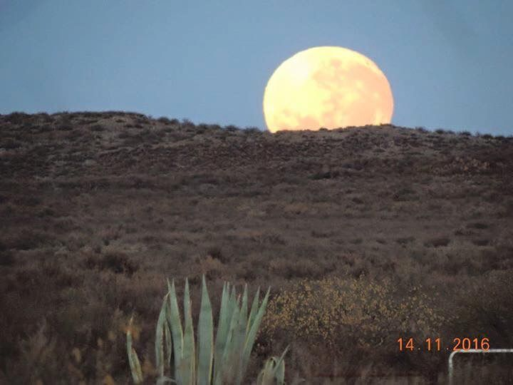 Prince Albert Supermoon Nov 16