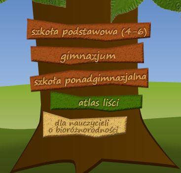 Poznajemy drzewa i krzewy