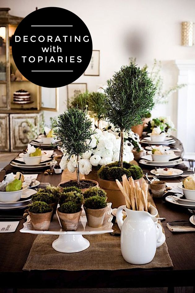 Wonderful Topiary Decorating Ideas Part - 7: Decorating With Topiaries