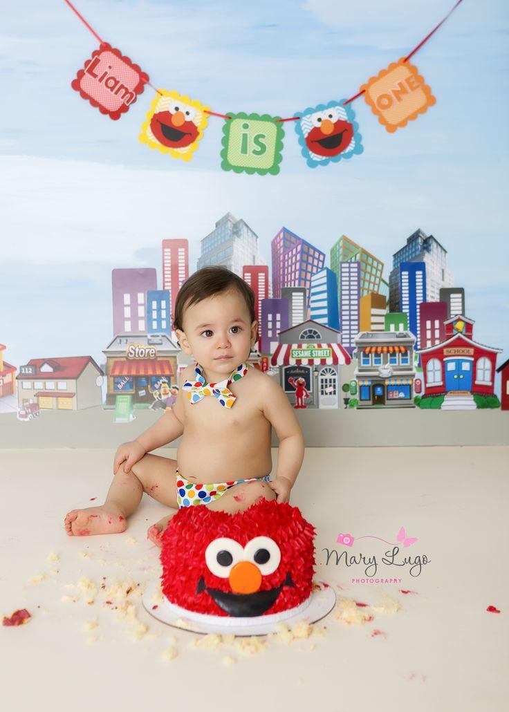 Sesame Street First Birthday Cake Smash. Backdrop Painted by me, Mary Lugo Photography. Elmo Cake.