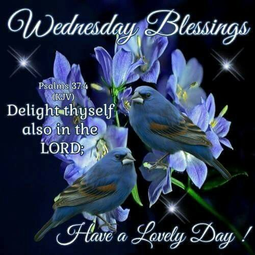 Blessed Day Quotes From The Bible: 17 Best Ideas About Psalm 37 Kjv On Pinterest