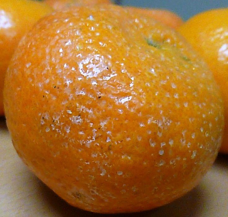 Exceso de cera sobre mandarina. Manchas blanquecinas producto de acumulación de exceso de cera en los poros de la piel de mandarinas.