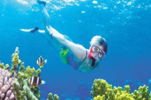 Free places to snorkel in Ft Lauderdale