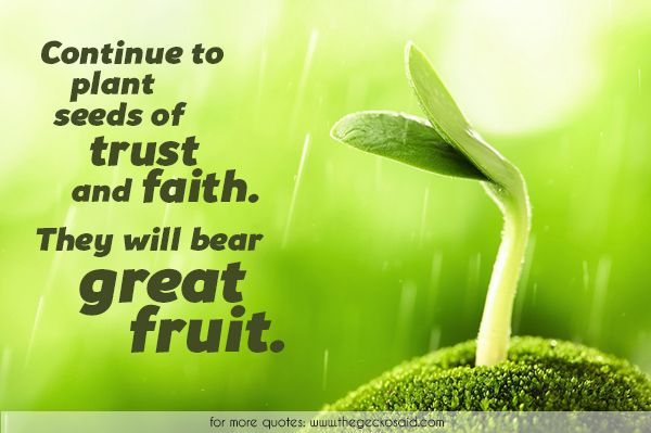 Continue to plant seeds of trust and faith. They will bear great fruit.  #bear #continue #faith #fruit #great #nature #plant #quotes #seeds #trust  ©2016 The Gecko Said – Beautiful Quotes