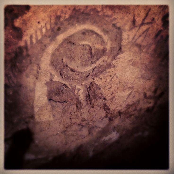 il gallo: simbolo della rinascita come massone  - Narni Sotterranea