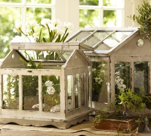 I love this!Green Houses, Ideas, Potterybarn, Minis Greenhouses, Terrariums, Shabby Chic, Plants, Gardens, Pottery Barns