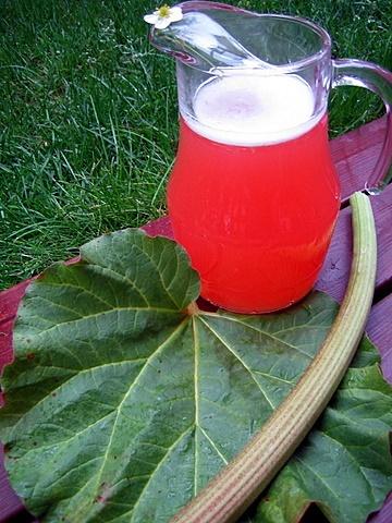 Strawberry & rhubarb mead