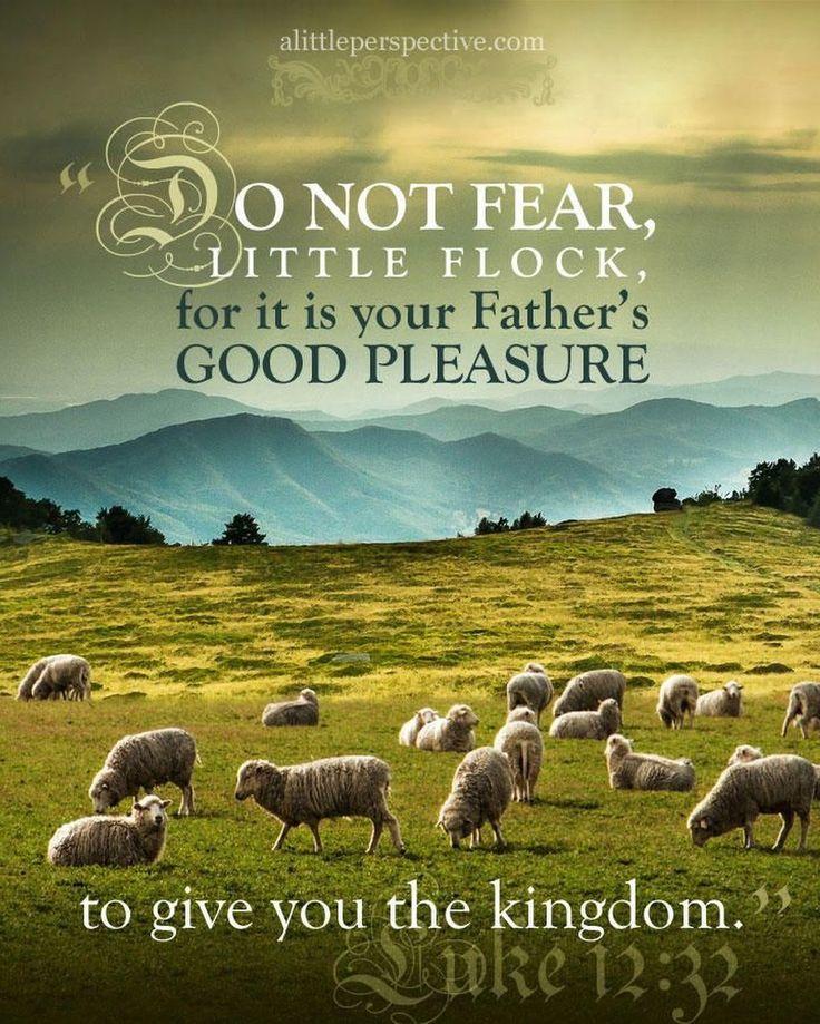 The Living... — Luke 12:32 (KJV) - Fear not, little flock; for it... | Scripture pictures, Read bible, Scripture