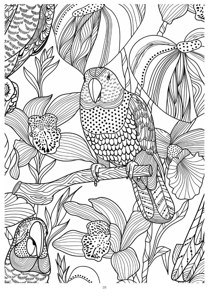 ClippedOnIssuu From Mind Massage Colouring Book For Adults