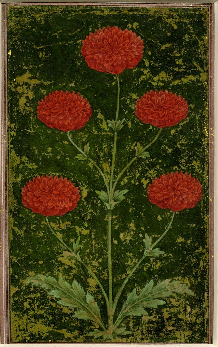 Painting. Flower on paper; 1651-1750 (Islamic)