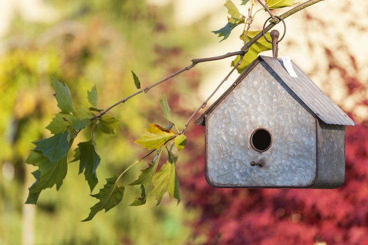 loftowy domek dla ptaków Aluro - http://www.sodo.pl/
