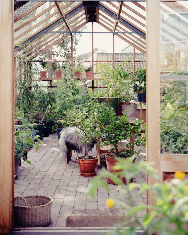 """rom123 - interiør & inspo on Instagram: """"Drivhuset til ... on Bade Outdoor Living id=42344"""