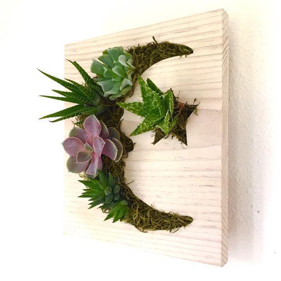 COLOR personalizado: Luna suculentas estrellas + cactus Vertical Garden | Jardinera vertical | Pared de Living | Plantador de la pared | Colgante Maceta | Jardinera de madera