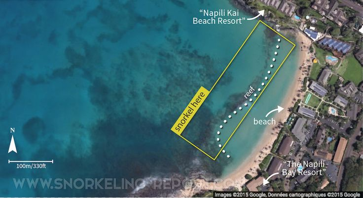 All you need to know about snorkeling Napili Bay: how to get there, where to snorkel, what to see. Situated at the north of the island of Maui, this spot is particularly well adapted to beginners.